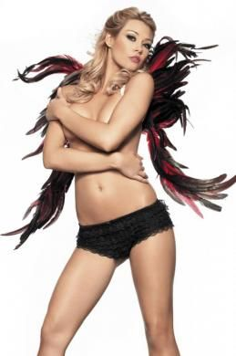 Feather Wing 28inX32in Black and Red