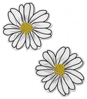 Wildflower White/Yellow Pasties